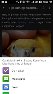 Tips Burung Kicauan- gambar mini screenshot