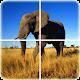 Animal Puzzle (game)