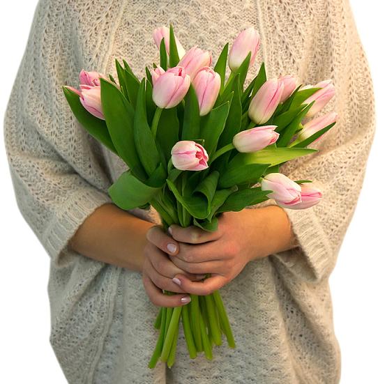 Как позаботиться о подаренных тюльпанах