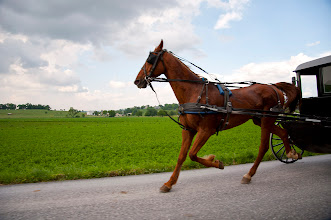 Photo: May 25, 2012 - Amish carriage
