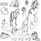 How To Draw Animals A To Z Android APK Download Free By Abderrahimdev