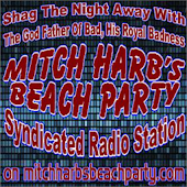 Mitch Harb's Beach Party