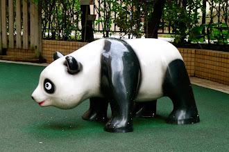 Photo: Panda, Roppongi-icchome