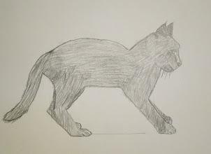 Photo: Cat in pencil