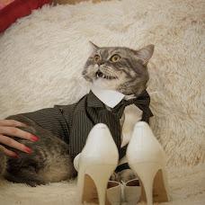 Wedding photographer Dmitriy Ascheulov (ashcheuloff). Photo of 14.10.2014