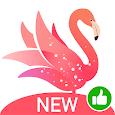 Yome Live - Live Stream, Live Video & Live Chat apk