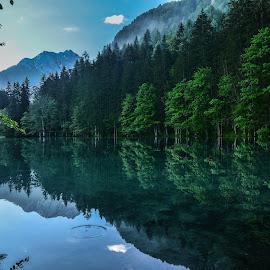 Odsev 1 by Bojan Kolman - Landscapes Waterscapes