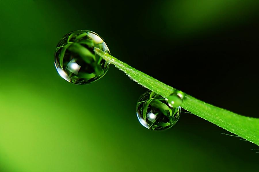 by Sengkiu Pasaribu - Abstract Water Drops & Splashes