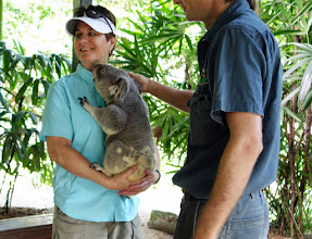 Photo: He was very gentle and settled right into my arms. And the Koala was nice, too. ha.