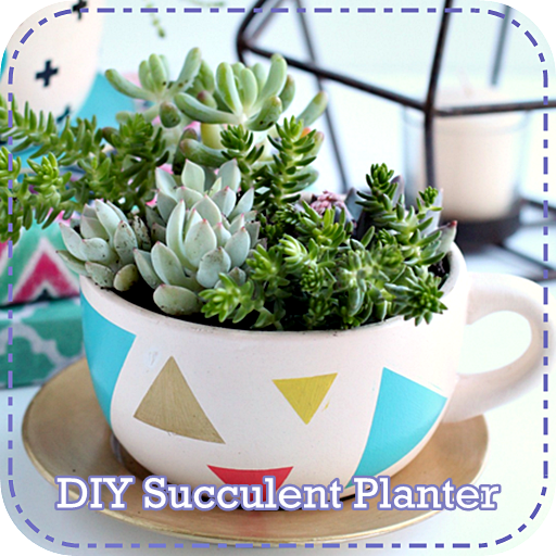 DIY Succulent Planter Android APK Download Free By EMDE
