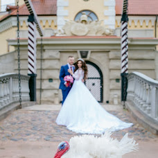 Wedding photographer Katya Kricha (Kricha). Photo of 22.02.2018