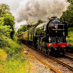 Full Steam Ahead  by Gordon Bain - Transportation Trains ( speed, steam train, power, tracks, steam )