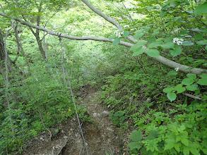 ロープのある急坂を下る