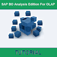 SAP BO Analysis Edition For OLAP Tutorial apk