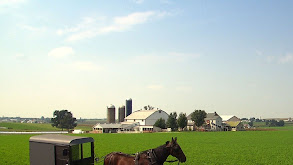 Amish 101 thumbnail