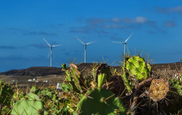 Green energy di Moreno re