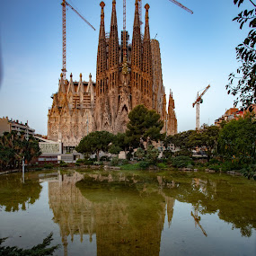Sagrada Familia by VAM Photography - Buildings & Architecture Places of Worship ( places, culture, church, barcelona, architecture )