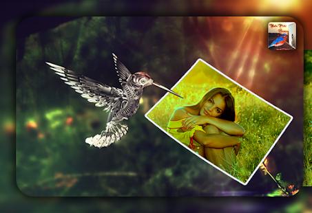 Bird Photo Frame - Photo Editor - náhled