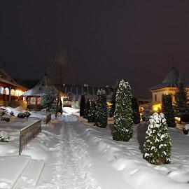 by Agatanghel Alexoaei - City,  Street & Park  Night