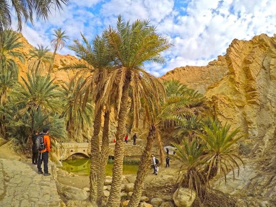 DICAS DE VIAGEM para visitar a TUNÍSIA | Vistos, Viagens, Transportes, Lugares e Hotéis para se alojar