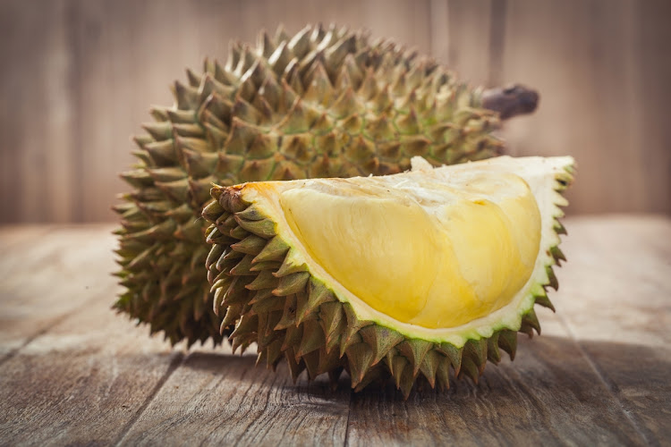 Durian, a fruit so stinky, will be featured in the Disgusting Food Museum exhibit.