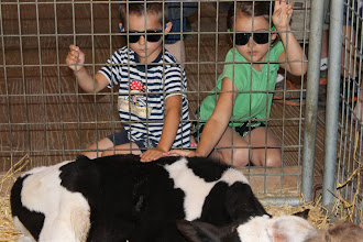 Photo: There is a great farm down in Overland park a little ways from our house.  The kids and I love this place.  We took the grandparents with us during their stay.  Oma bought the kids these shades and they thought they were the coolest kids ever.