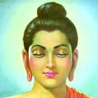 gautam buddha live wallpaper icon