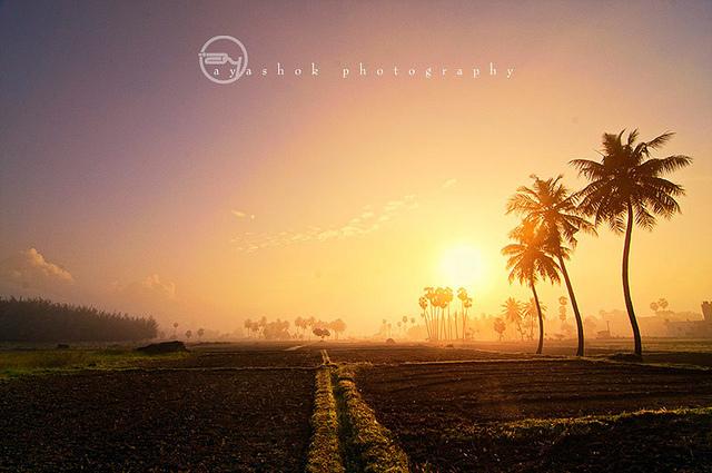 Photo: Photography by Ashok Saravana