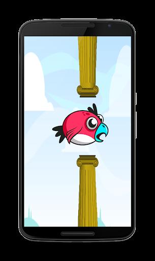 Adventure Bird
