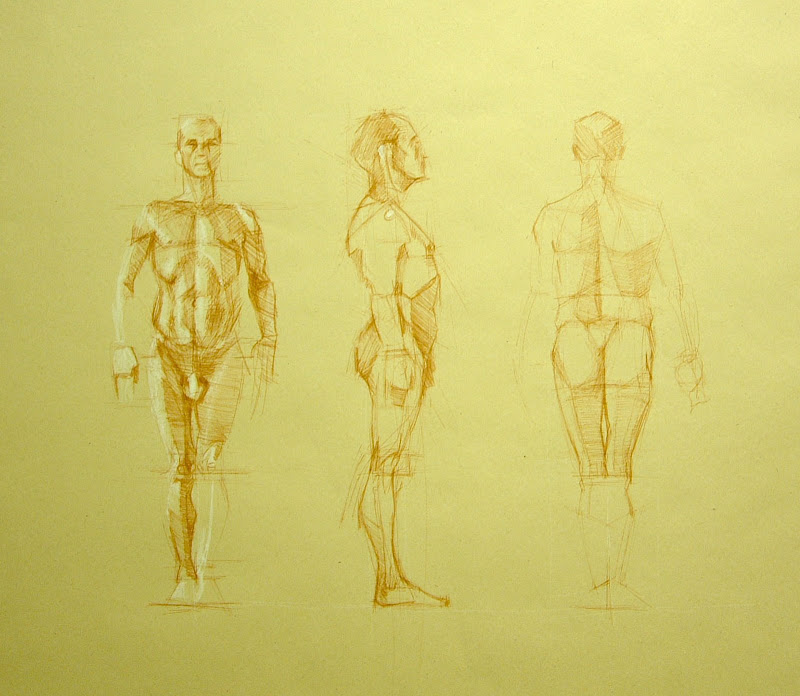 Anatomy For The Artist Jeno Barcsay Pdf Free - lostmultimedia