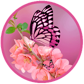Romantic Pink Butterfly LWP