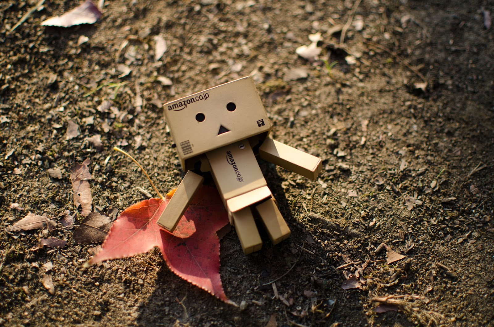 This is a small, unanimated robot lying on the ground. This is a DIY homemade robot created with cardboard Amazon boxes.