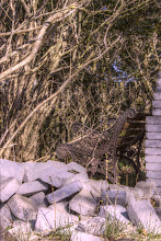 Photo: Old and forgotten (hdr)