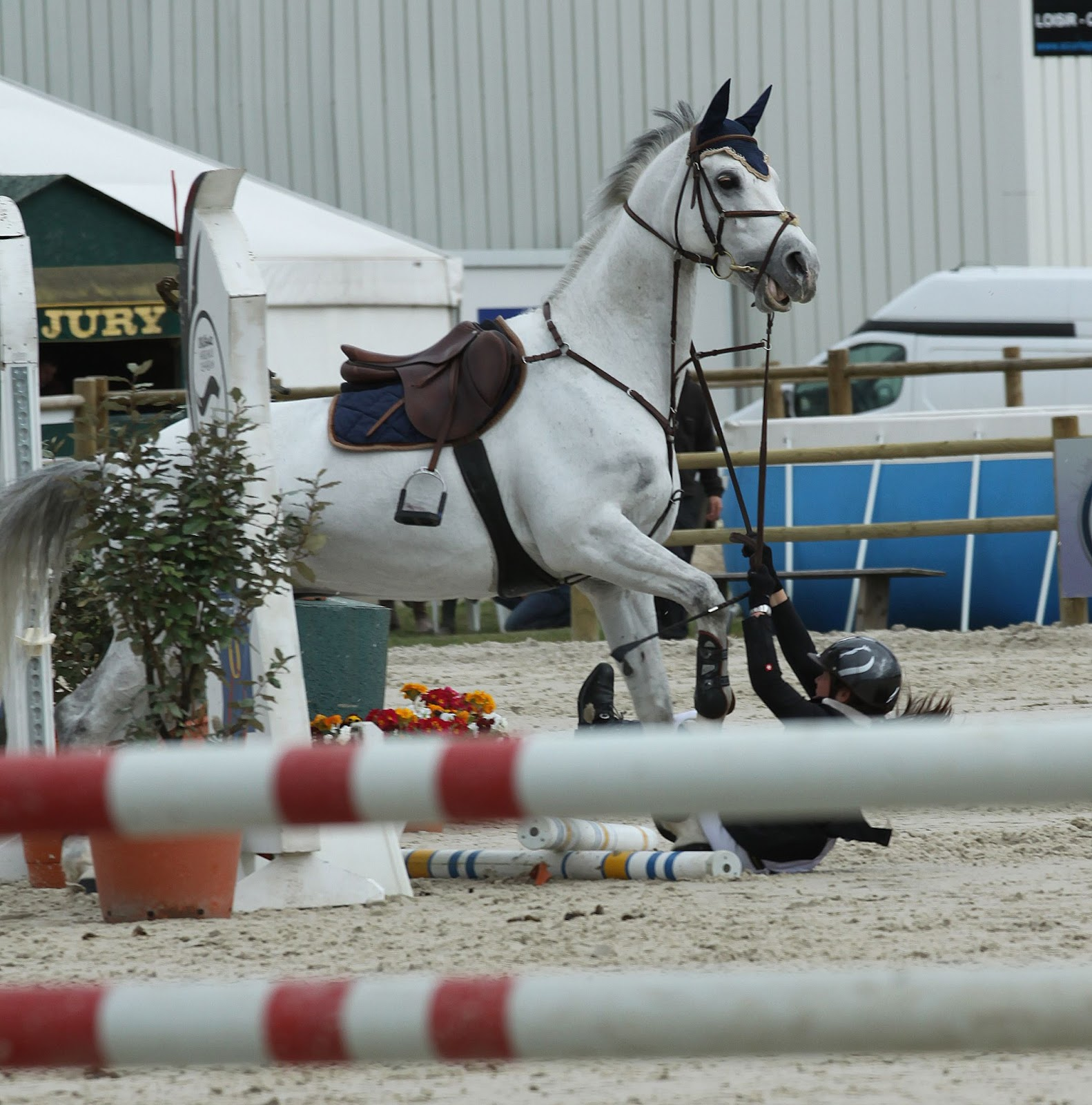 chute cheval changer casque équitation