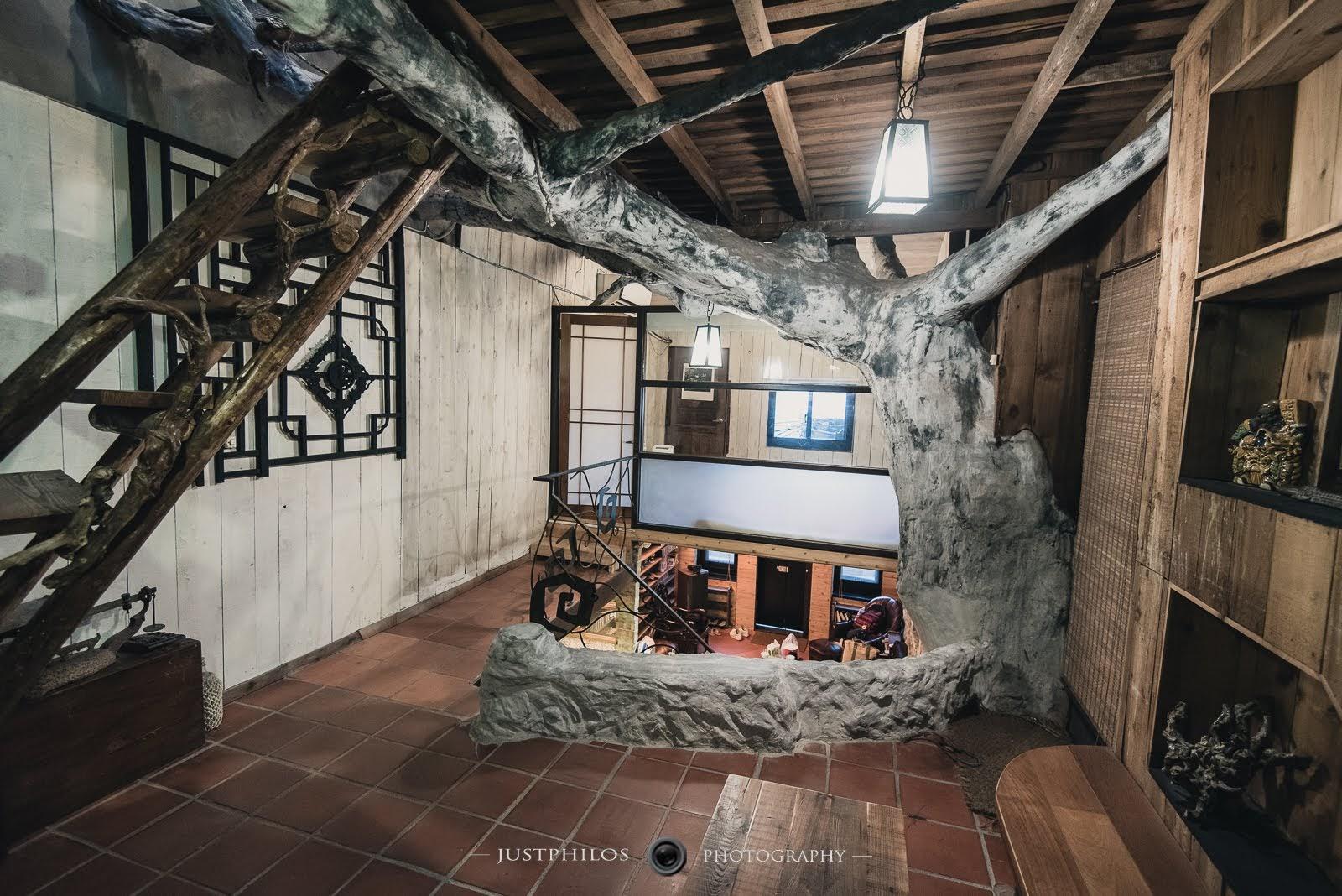 屋內有一棵老樹的構造,不太確認是否是本身就有的樹枝。但整體而言的設計感還不錯。