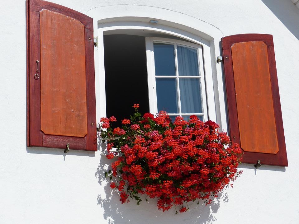 window-189564_960_720.jpg