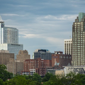City Skyline by Thomas Shaw - City,  Street & Park  Skylines ( clouds, building, skyscrapers, downtown raleigh, windows, cityscape, raleigh, hotels, city, north carolina, sky, skyscraper, buildings, trees, bricks, downtown )