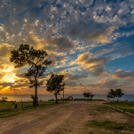 In park by Sergio Gold - Landscapes Sunsets & Sunrises