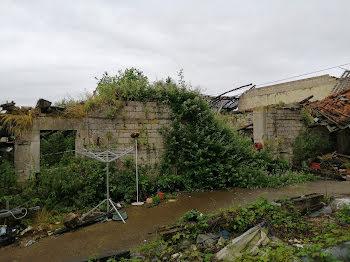 ferme à Dommartin-lès-Cuiseaux (71)