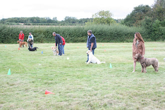 Photo: Line up for Snaffle The Sausage!