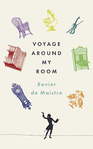 cover image for Voyage Around My Room