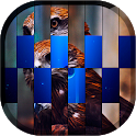 Pic FX Transition LWP icon