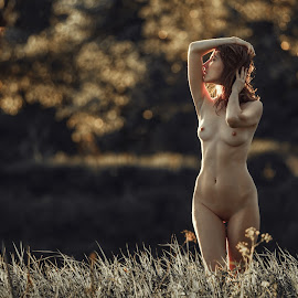 Summer nymph by Dmitry Laudin - Nudes & Boudoir Artistic Nude ( nude, figure, girl, nature, grass, sunset, leaves, bokeh )