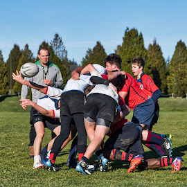 Where's The Ball by Garry Dosa - Sports & Fitness Rugby ( ball, sports, outdoors, rugby, action, males, people, movement, sport )
