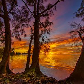 Natures Color by Ken Wagner - Landscapes Sunsets & Sunrises ( hdr, nature, naturecloud formations, florida, sunset, nikon,  )