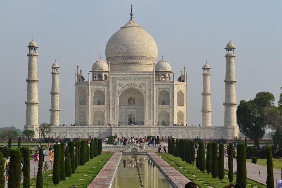 The Taj by Jitender Kumar - Buildings & Architecture Public & Historical ( love, taj, tomb, mahal, taj mahal )