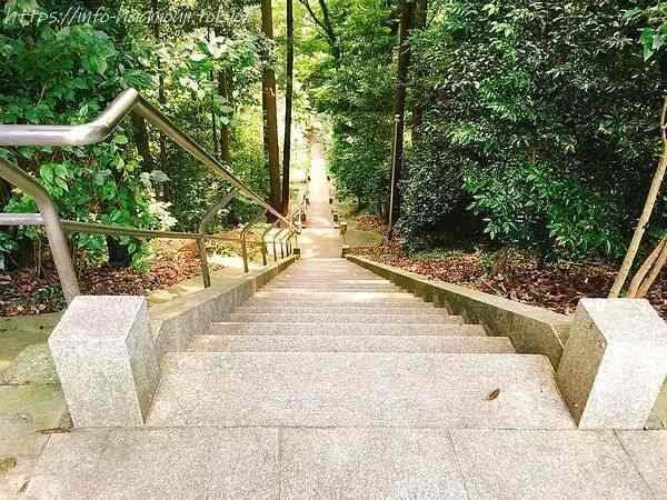 白山神社の階段