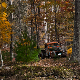 Old Classic by Gerri Macilvane - Transportation Automobiles ( fall, truck, woods, rusty )