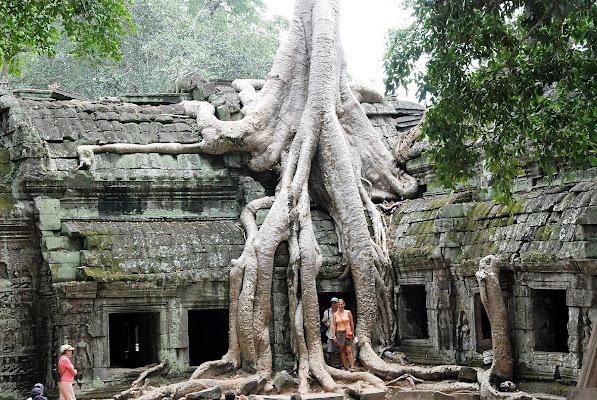 Cambogia un tempio abbondonato nella foresta  di linobeltrame
