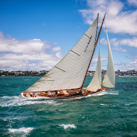Classic yacht, Auckland Harbour. by Graeme Hunter - Transportation Boats